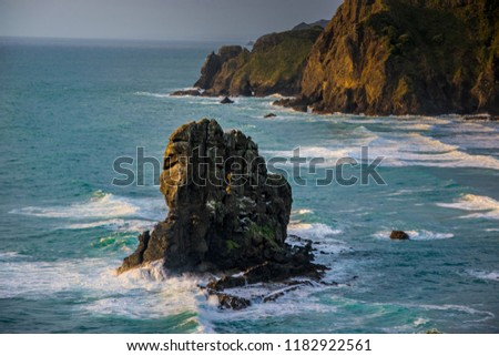 solemn rock in ocean at bay in new zealand with turqouise water and waves #1182922561