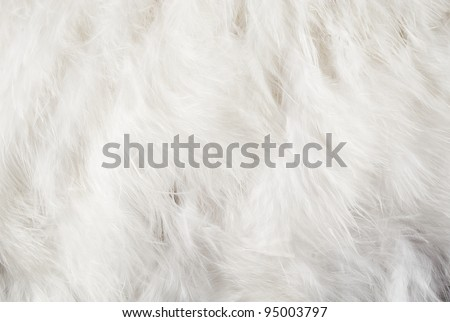Solid white feather background for art design.