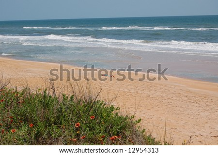 Solitary sunbather at the beach