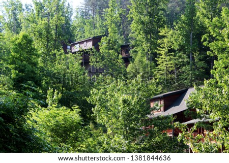 Solitude in a forest of cabins #1381844636