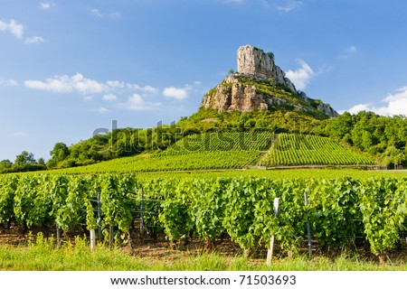 Solutre Rock with vineyards, Burgundy, France - stock photo