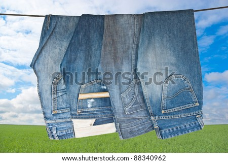 Some blue jeans drying on Green meadow in sunny day