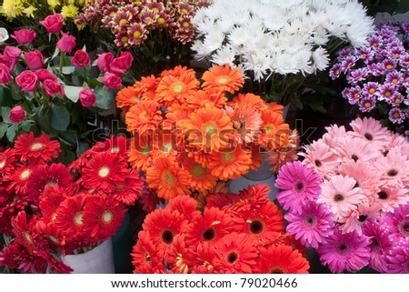 Some bunches of different varieties of colourful flowers on display in a florist shop.