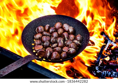 some chestnuts being roasted in a skillet with holes on a woodfire, in Catalonia, Spain, where is a tradition to eat roasted chestnuts on All Saints Day in a feast called Castanada