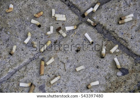 Some cigarette butts crushed on tiled concrete floor