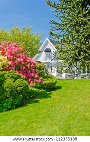 Some flowers and nicely trimmed bushes on the lawn in  front of the house. Landscape design.