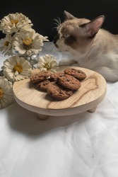 Some fresh baked chocolate chip cookies on the round wooden board and on the background a cute cat smells the Zinnia flowers. On the white sheet