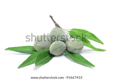 some green almonds with its shells on a white background