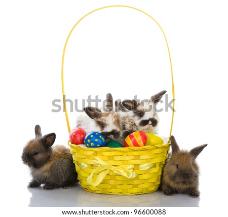 Some lop-eared rabbits with colored eggs In a basket. isolated on white background