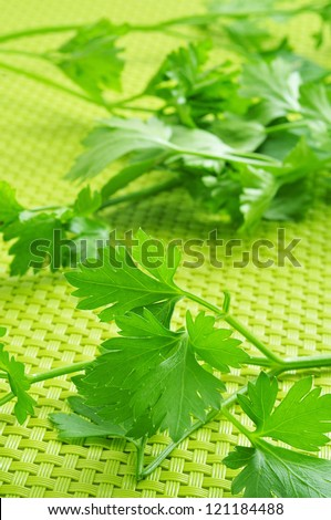 some parsley sprigs on a green woven background