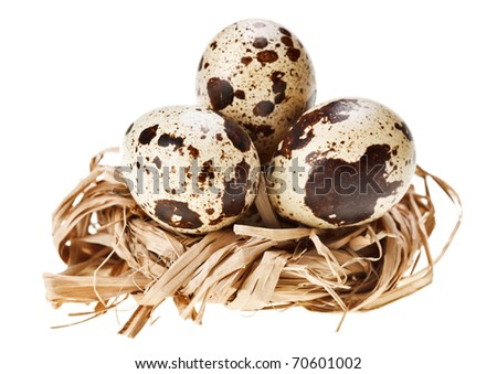 Some quail eggs in the straw nest, isolated on white