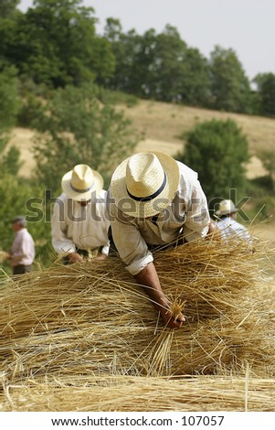 some tradicional agriculture work