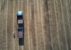 someone have a lot of work at the field. Truck in the field. Aerial shot of an agricultural wheat field, a combine harvester and a truck in Europe. Aerial View Of Rural Landscape. Harvesting Of Wheat