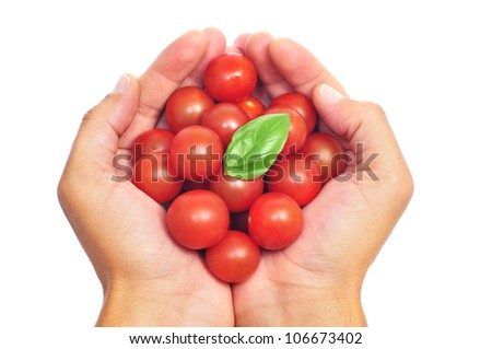 someone holding a pile of cherry tomatoes on his hands on a white background