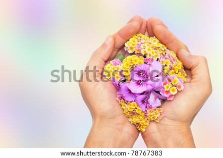 someone with the hands full of flowers on a colorful background