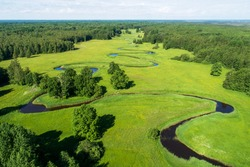 Soomaa National Park. Aerial view of summery lush and sunny Mulgi wooded meadow in Estonian nature, Northern Europe.
