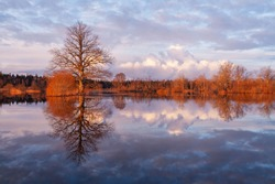 Soomaa National Park during a spring flooding also known as the Fifth season in Estonian nature, Northern Europe.