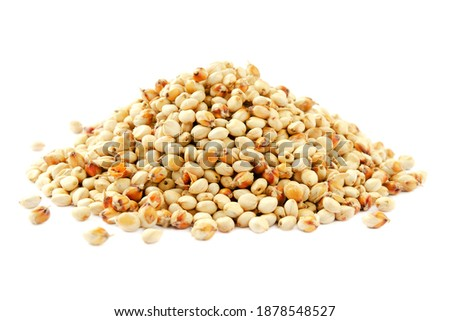 Sorghum seeds isolated on white background. Sorghum Moench on a white background. Sorghum seeds heap isolated on white background. Whole seeds of sorghum, millet, feed. Zdjęcia stock ©