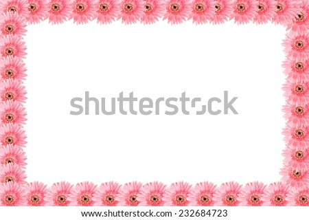 Sort pink flower picture frame.