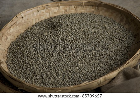 Sorted unripened green coffee beans on a tray