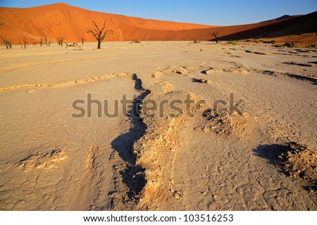 Sossusvlei landscape with dead Acacia trees and red sand dunes, Namibia, southern Africa