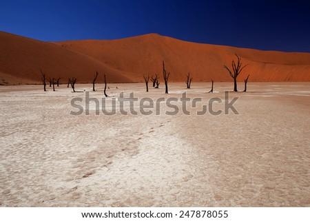 Sossusvlei - pan surrounded by high red dunes. Namib desert,  Namib-Naukluft National Park. Republic of Namibia. South West Africa