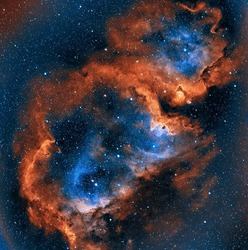 Soul Nebula - IC1848 - Taken with a Celestron RASA 8 telescope