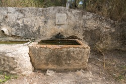 source of crystalline water, the fountain has a spout in which water falls, the pillar of the fountain is made of stone, there is vegetation