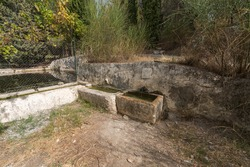 source of crystalline water, the source has a spout in which water falls, the pillar of the fountain is made of stone, there are bushes and trees