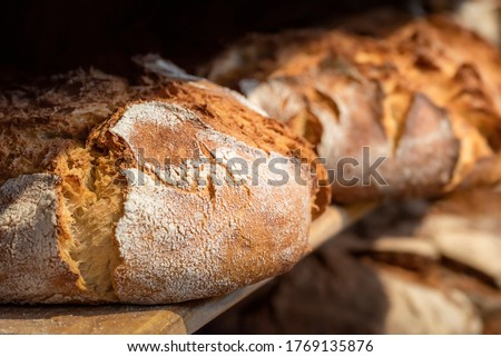 Sourdough bread close-up. Freshly baked round bread with a golden crust on bakery shelves. German baker shop context with rustic bread assortment. ストックフォト ©