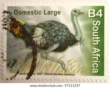 SOUTH AFRICA - CIRCA 2007: A stamp from South Africa shows image of an ostrich (Struthio camelus), circa 2007