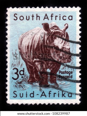 SOUTH AFRICA - CIRCA 1954: A stamp printed in South Africa shows White Rhinoceros , series, circa 1954