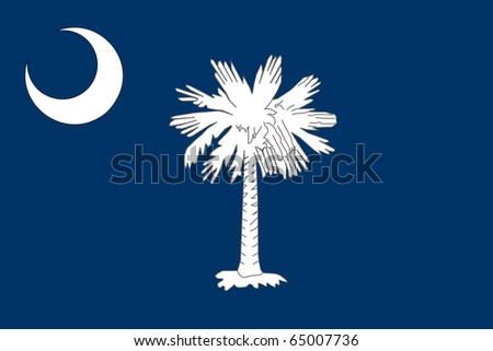 South Carolina state flag of America, isolated on white background.