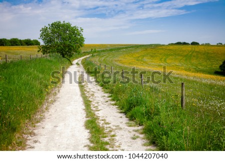 South Downs Way, a  long distance footpath and bridleway along the South Downs hills in Sussex, Southern England, UK #1044207040