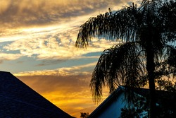 South Florida sunset over residence houses with silhouette of palm trees homes. Deep blue and orange sun low on horizon behind cirrus, not cumulus, cumulonimbus, nimbus, or stratus clouds in the sky.