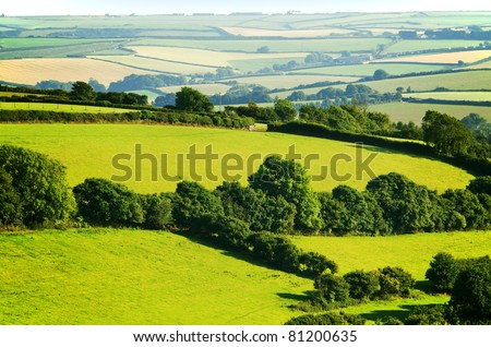 south hams countryside devon england uk