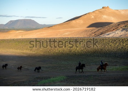 South Iceland - July 23, 2017: Icelandic horse in the field of scenic nature landscape of Iceland.  Foto stock ©