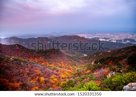 South Korea Travel,Temple in South Korea In autumn and covered with fog. Located on the Gwanaksan Mountain,Temple of south Korea in autumn,Tourist attraction in south Korea in autumn #1520331350