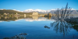 south tufa at the mono lake in california in the usa