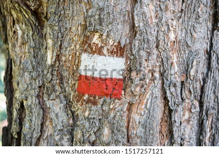 South Tyrolean flag (Ladin) painted on bark tree in Val Gardena, Italy, 2019. Stok fotoğraf ©