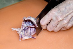 Southeast Asian, elderly woman's hands cutting up chicken's ribcage with knife on plastic cutting board. Preparing to cook.