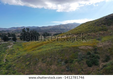 Southern California Mountain Super Bloom #1412781746