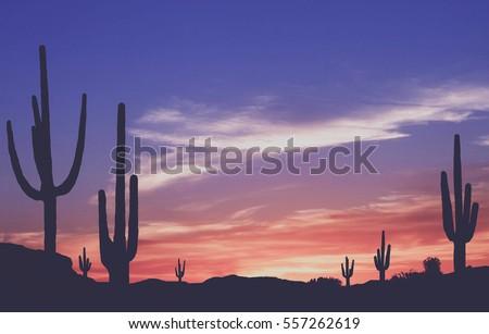 southwest desert   vintage...