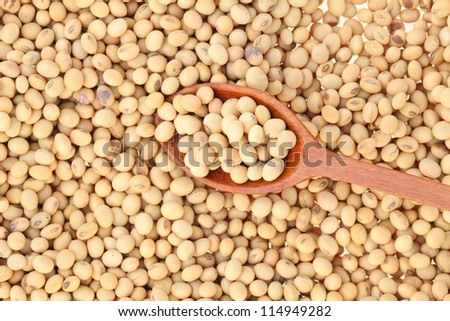 soy bean with wooden spoon