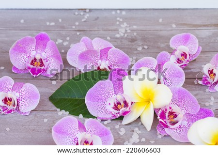 Spa and wellness setting with   fresh frangipani  and orchid  flowers