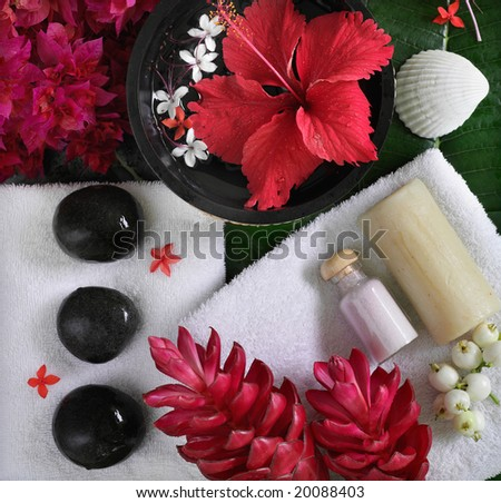 spa beauty objects for body care, red exotic tropical flowers, sea shells, black stones, towels