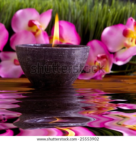 Spa candle, orchid flowers and green grass for alternative therapy