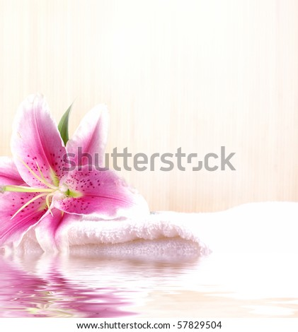 Spa composition made of natural objects - stock photo