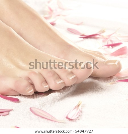 Spa composition of legs, towel and petals