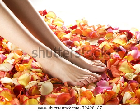 Spa compositions of sexy female legs and plenty of different petals
